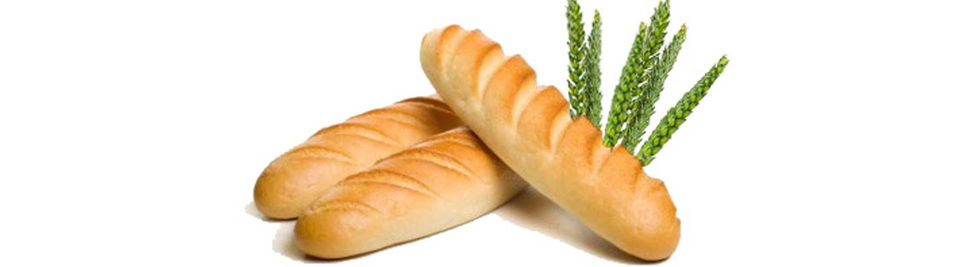 brood1
